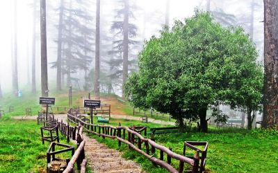 Dhanaulti Budget tour package